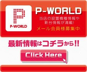 banner_p-w